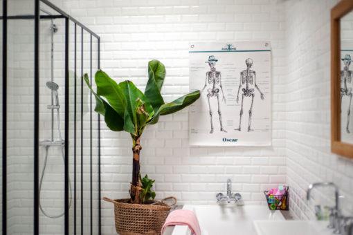 Affiche Anatomie, avec Oscar le squelette