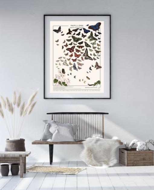 Affiche Papillons, planche décorative sur toile polycoton. impression d'art