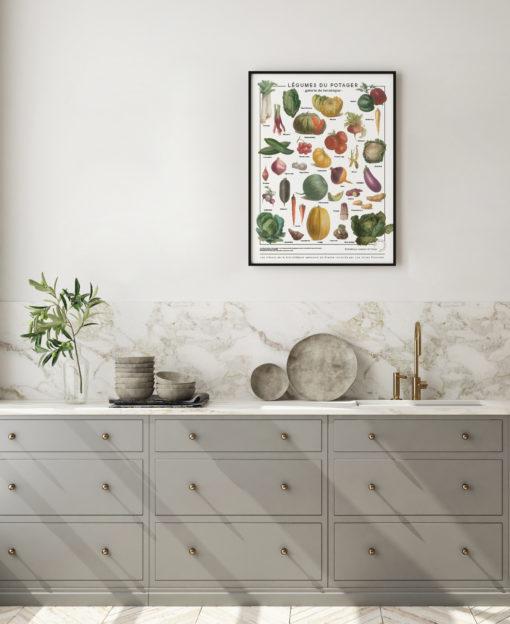 Affiche décorative illustrée de légumes anciens, des dessins issus de l'Album Vilmorin.