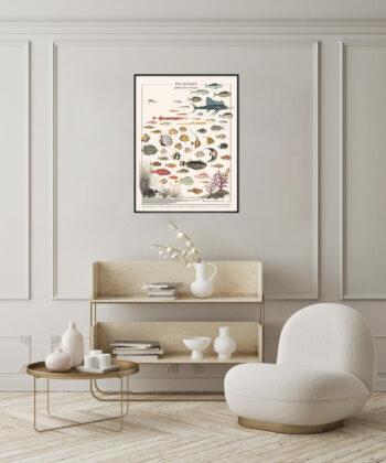 affiche poissons exotiques décoration salon blanc