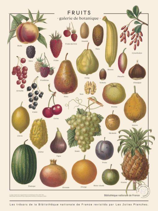 Affiche ancienne fruits