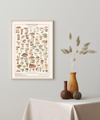 affiche Champignon, imprimée sur toile polycoton waterproof, pour une décoration murale vintage et Made in France.